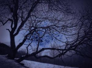 Emozioni e volonta - Robert Monroe - Viaggi Astrali