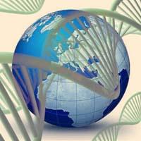 nel DNA c'è il registro Akashico