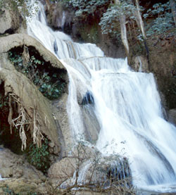 Rock Water - Acqua di roccia  - Aqua rupestris