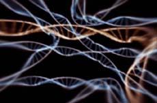 DNA fantasma