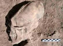 Scheletri del cimitero di Sonora, Messico
