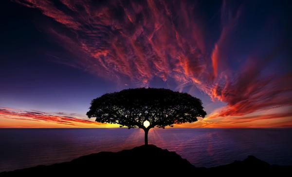 La Terra sarà presto spazzata da straordinarie e rapide onde di Elettricità Cosmica. Da qui ad alcune decadi coloro che sono malvagi e fuorvieranno gli altri, non saranno in grado di sopportare l'intensità di queste onde. Saranno così assorbiti dal Fuoco Cosmico che consumerà il male che essi possiedono. Nostra Madre, la Terra, si libererà di coloro che non accettano la Nuova Vita. Li rigetterà come frutti avariati. Non saranno in grado di reincarnarsi presto su questo pianeta, criminali inclusi. Resteranno solo coloro che hanno in loro l'Amore.