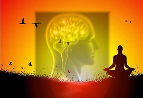 Meditare rende il cervello più grande
