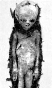 Scheletro umanoide di Baian-Kara-Ula
