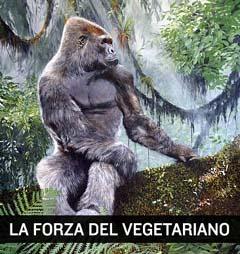 Gorilla dieta vegetariana