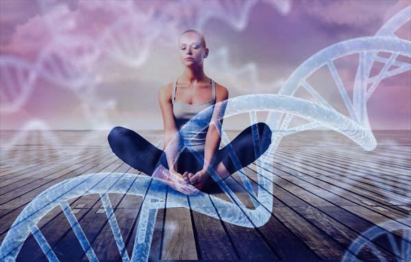 Meditazione, DNA e invecchiamento