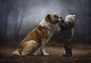 Rapporto animali bambini