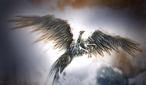 Quando ho letto dei Voladores mi è balenata una possibile spiegazione. Secondo ciò che dice Castaneda, questi esseri astutissimi e molto evoluti che vengono dallo spazio profondo, si nutrono della nostra energia e in particolare dell'energia che ha una qualità egoica. Avidità, rabbia, prevaricazione, vittoria, sete di potere, lussuria, disperazione, invidia, risentimento, disprezzo, eccessi di ogni tipo. Queste sono le cose che i Voladores prediligono.