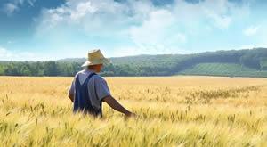 Agricoltura ecocompatibile