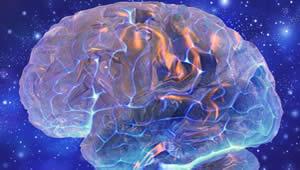 Il cervello è un ologramma