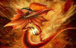Salamandre del fuoco