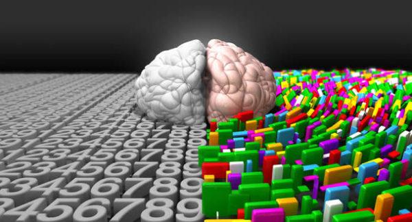 Emisfero destro e sinistro del cervello
