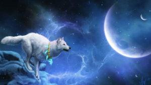 Avere uno spirito custode animale