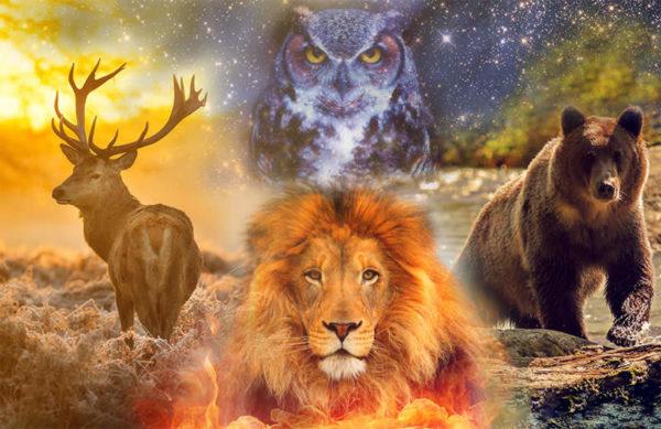 Animali nell'immaginario dell'uomo