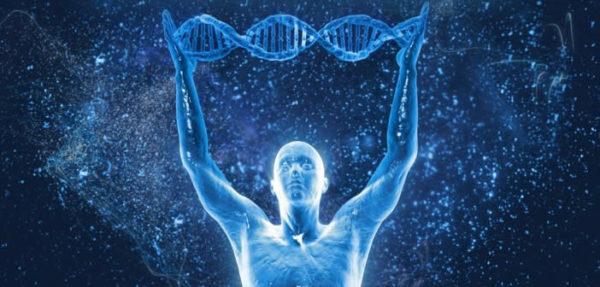 Cambiementi nella struttura- del dna umano