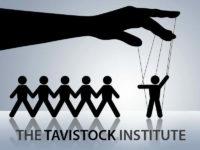 Tavistock istitute