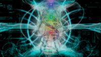 Sistema energetico dell'uomo