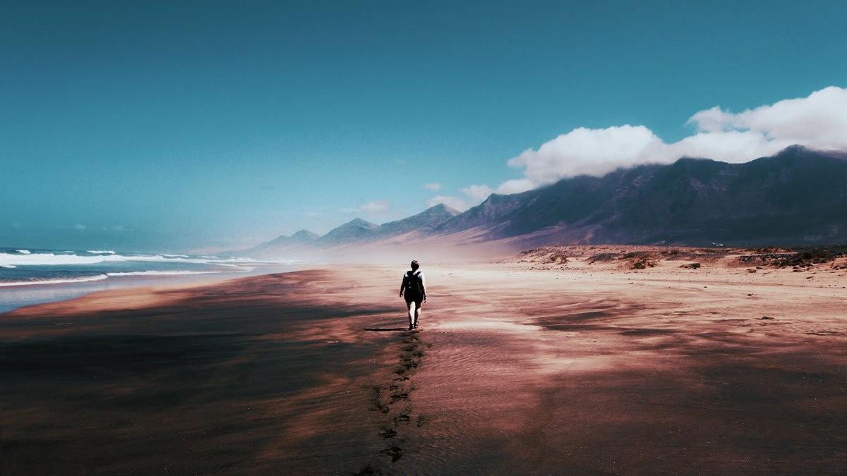 Mindfulness: l'importanza del qui e ora | Psicologia Contemporanea