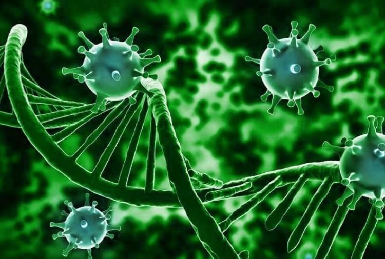 Scoperta la cura definitiva contro virus Hiv - Tiscali Notizie