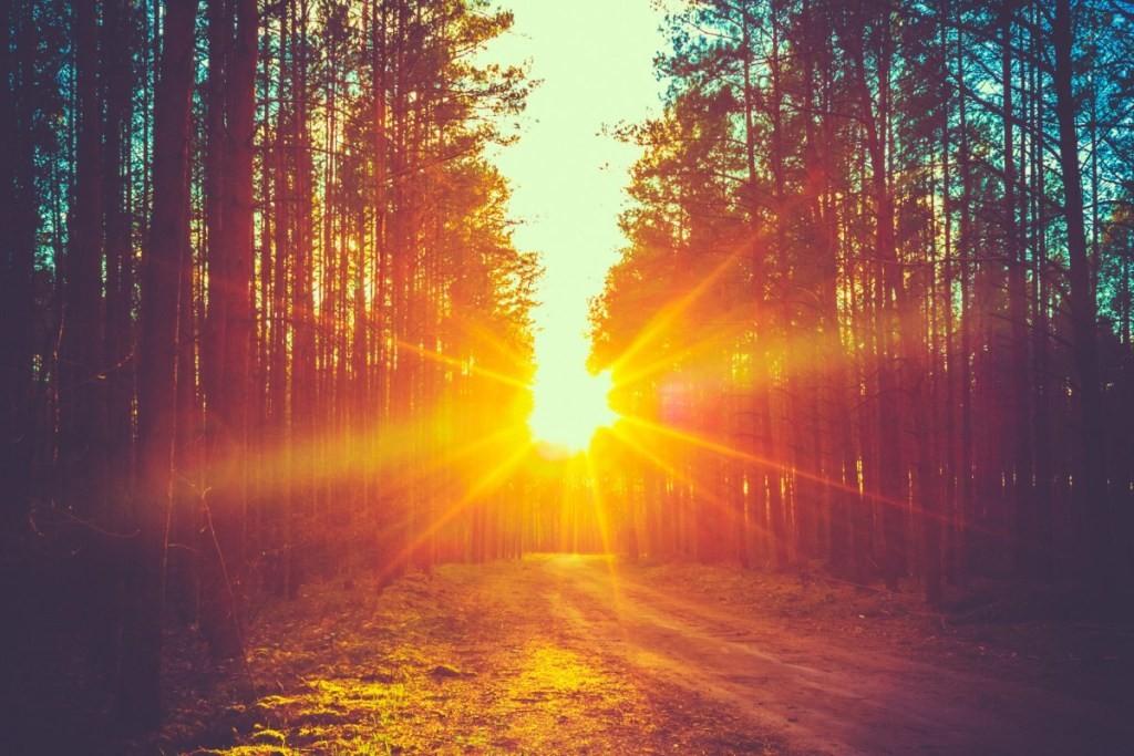 L'Apertura del Cuore - Sognare la Terra - Sciamanesimo, Antropologia del Sacro e Sentieri di Cura