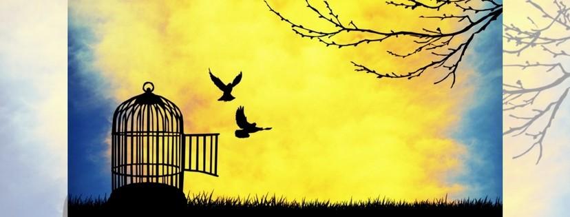 Sulla sovranità più importante: quella individuale - Einaudi Blog