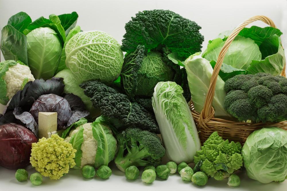 Risultato immagini per cavoli, broccoli e cavolfiori