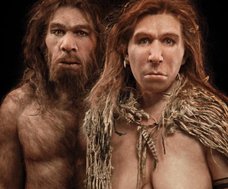 Le ibridazioni ridisegnano l'albero dell'evoluzione umana | Pikaia